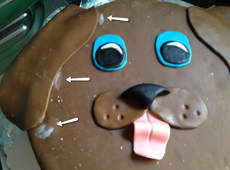 Veganer Kuchen Hundeohr